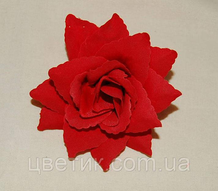 Роза оксамит - 12 (10 см)