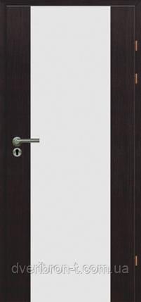 Двери Брама Модель 17.3 триплекс, фото 2