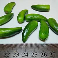 Перец (огурец) мини.  3 см