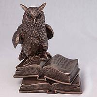 Статуэтка Сова на книгах Veronese 17 см 74110A4, символ мудрости