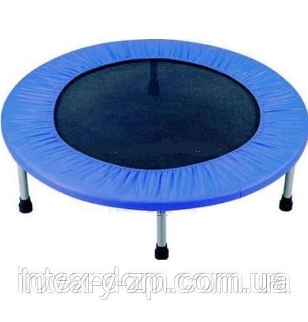 Батут детский спортивный Profi Action MS 0330(152 см)