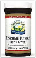 Красный Клевер (Red Clover) NSP - очистка лимфы, крови, кожи.