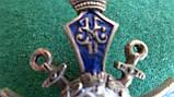 Знак 2-го пехотного Софийского Императора Александра III полка., фото 4