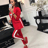 a8631861 Модный строгий женский костюм брюки и пиджак с лампасами костюмка размеры  42 44 46