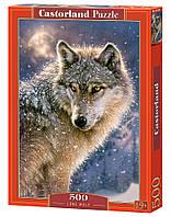 Пазлы Castorland  500шт (52431) 47*33 см (Волк)
