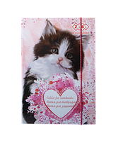 Картонная папка для тетрадей zibi zb.14983 cute cat на резинке b5+