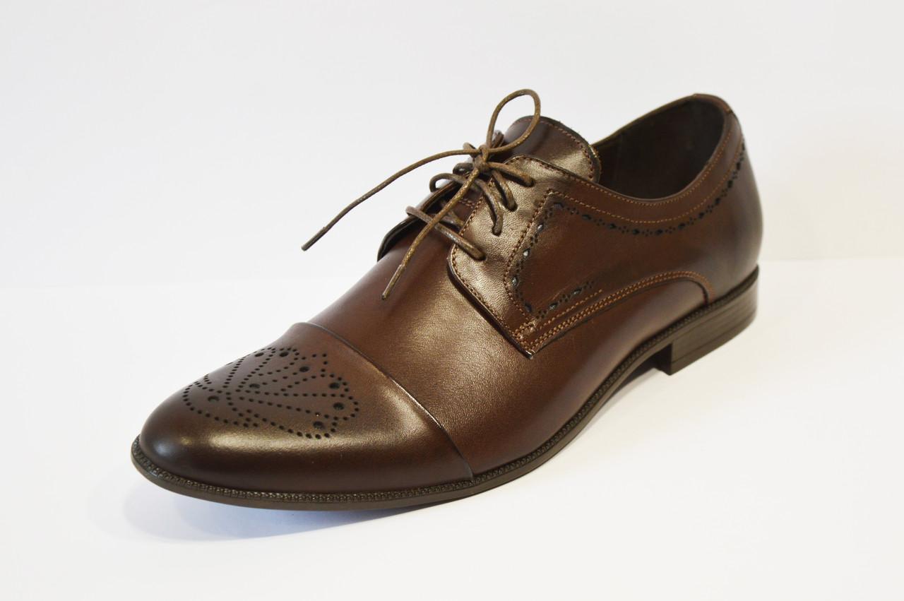 Классические коричневые  туфли Tapi 6065