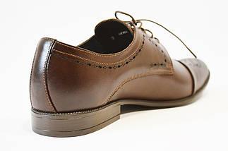 Классические коричневые  туфли Tapi 6065, фото 3