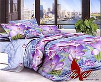 Евро комплект постельного белья XHYR1386
