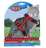 Шлейка с поводком для кошки (4 цвета) 35-45см/10мм/1.20 м, нейлон с рисунком , фото 1