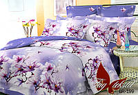 Евро комплект постельного белья поликоттон BR199 ТM TAG