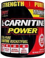 SANЛ-КарнитинL-Carnitine Power112 g
