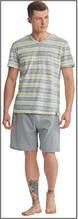 Пижама мужская польская хлопок трикотаж серая полоска шорты футболка Key Кей MNS 310 А8