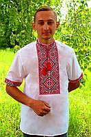 """Мужская вышиванка """"Федор"""" (поплин) короткий рукав, 43, Поплин белый, Красный, Короткий"""
