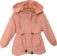"""Куртка-ветровка детская демисезонная """"Горох"""" #В1642 для девочек. 4-5-6-7-8 лет. Персиковая. Оптом., фото 1"""