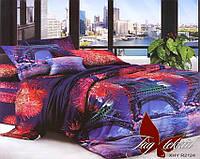 Двуспальный комплект постельного белья с Парижем, Поликоттон