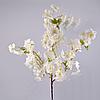 Ветка вишни тройная белая