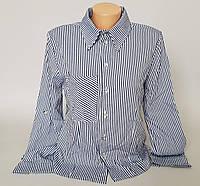 Женская молодёжная блузка в полоску