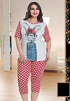 Домашняя одежда Lady Lingerie комплект 207 2XL