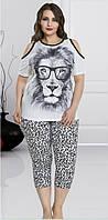 Домашняя одежда Lady Lingerie комплект 220 2XL