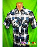 Рубашка на мальчика с коротким рукавом