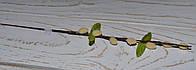 Ветка лозы искусственной беж 31 см, фото 1