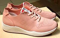 Кроссовки Lion 81Fashion искуств кожа, Цвет-Розовый, фото 1