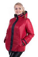 Демисезонная куртка женская Астрид батал, фото 1