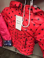 """Куртка весенняя демисезонная детская на """"молнии"""" с капишоном для девочки"""