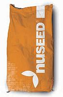 Семена сорго Прайм