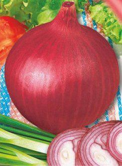 Семена лука Веселка, фото 2