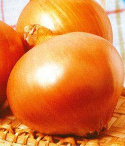 Семена лука Халцедон, фото 2