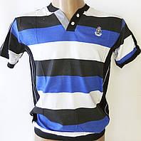 """Мужская футболка """"BAYDO"""". Полоска. №5516."""