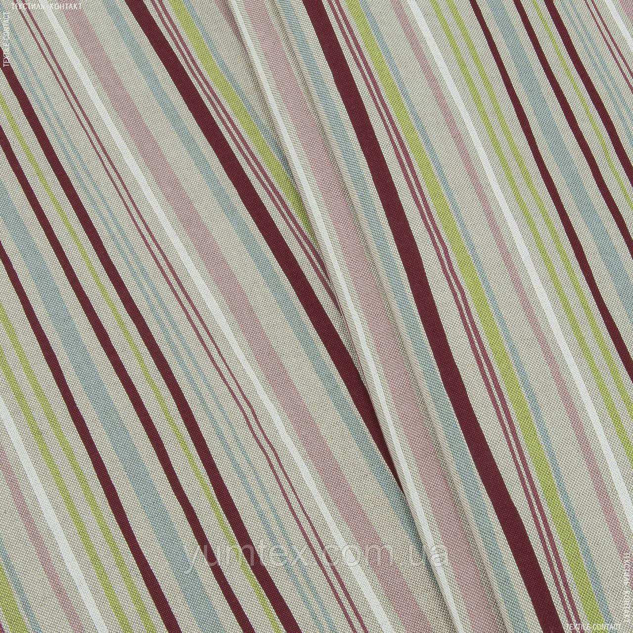 Панама принт кентуки/kentucky  полоса бордо салат 126513