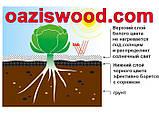 Агроволокно p-50g 1.07*100м чорно-біле UV-P 4.5% Premium-Agro Польща, фото 4