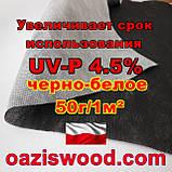 Агроволокно p-50g 3.2*50м чорно-біле UV-P 4.5% Premium-Agro Польща, фото 8