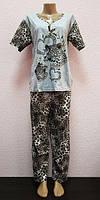 Пижама женская с брюками хлопок  размер 44-54