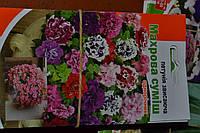 Петунія махрова ампельна (звисаюча) суміш 15-30 насіння