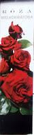Троянда великоквіткова червона