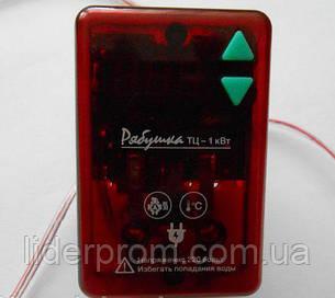 Терморегулятор для инкубатора Рябушка цифровой ТЦ-1, фото 2
