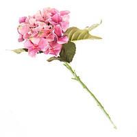 Розовая гортензия 53см