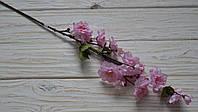 Сакура пышная розовая