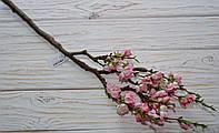 Сакура мелкая розовая премиум