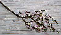Сакура мелкая нежно-розовая премиум