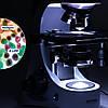 Микроскоп Optika B-383PL 40x-1000x Trino, фото 4