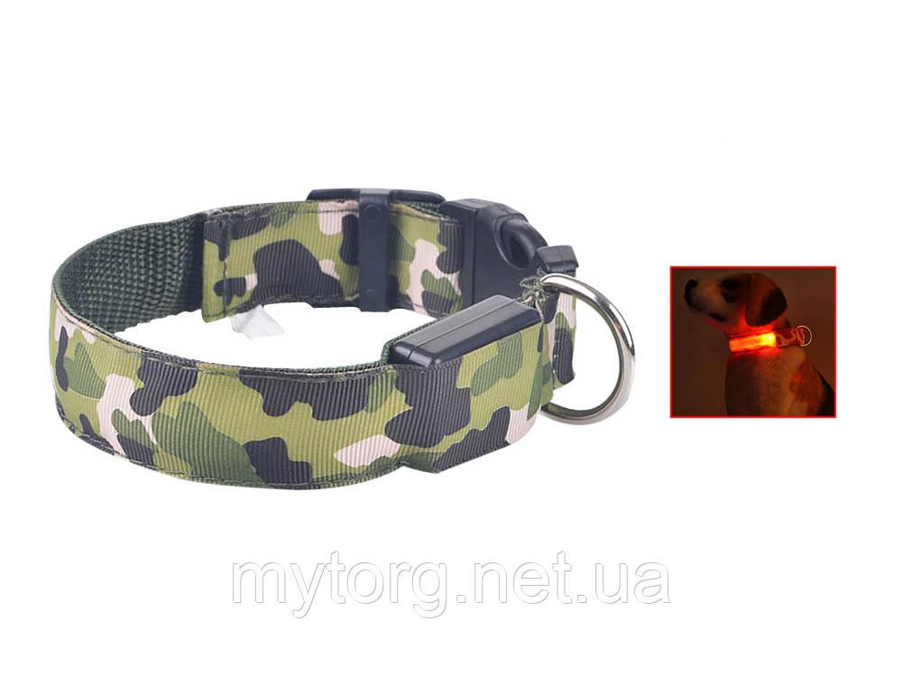 Светящийся светодиодный ошейник для собак TAILUP L Зеленый