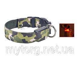 Светящийся светодиодный ошейник для собак TAILUP M Зеленый