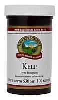 Келп -  бурая водоросль (Kelp) NSP - источник природного йода.