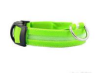 Светящийся ошейник для собак Ширина: 2.5 см, длина:35-40см, диапазон регулировки: 5см (Размер: S) Зелёный