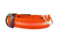 Светящийся ошейник для собак Ширина: 2.5 см, длина: 40-48 см, диапазон регулировки: 8 см (размер М) Оранжевый